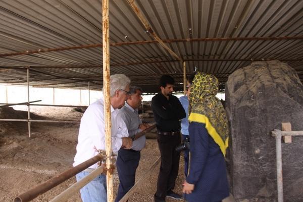 بازدید پروفسور پیر بریان از کاخ های هخامنشی استان بوشهر
