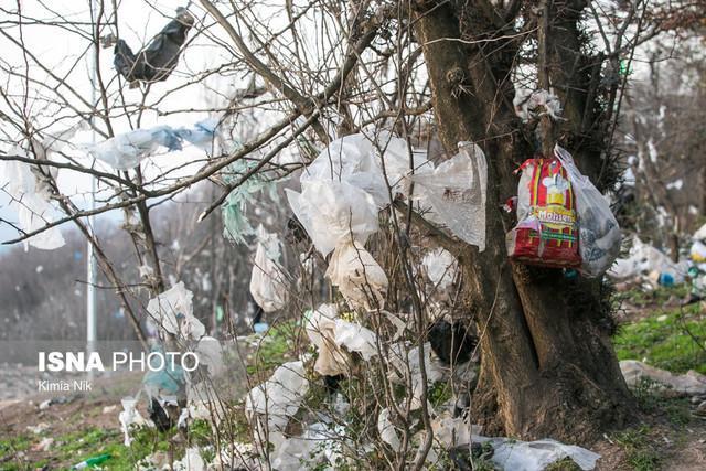 دوئل ناتمام جنگل زیبای سراوان با زباله ها