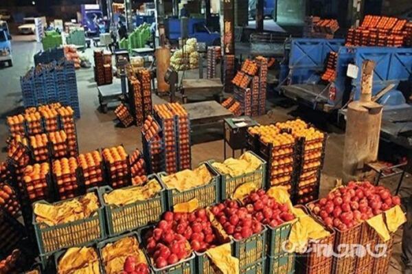عرضه بیش از هزار تن میوه شب عید در هرمزگان