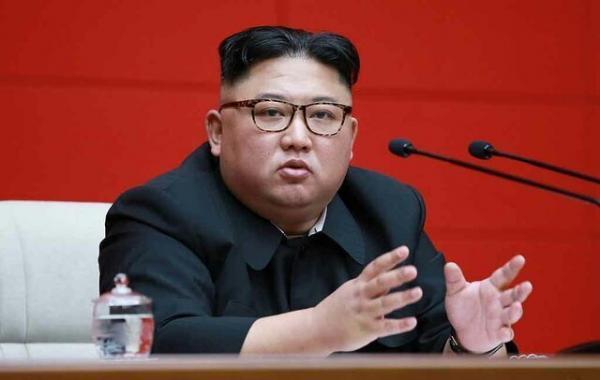 کره شمالی گربه ها و کبوترها را در مناطق مرزی با چین می کشد