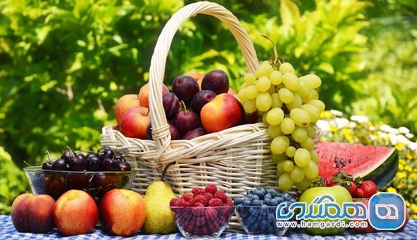 میوه تابستانی با خواص بسیار؛ از پیشگیری از بیماری های قلبی تا بهبود تمرکز